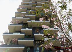 Il Bosco verticale è l'edificio più bello del mondo